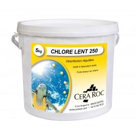 Chlore Lent - Seau de 5 Kgs