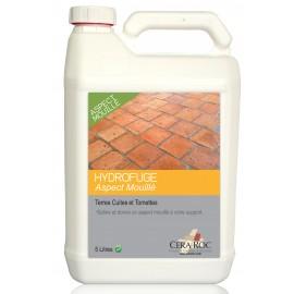 Hydrofuge Aspect Mouillé Terres Cuites & Tomettes