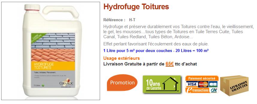 protection hydrofuge tuile ciment conseils et vente d 39 hydrofuge toiture blog conseils cera roc. Black Bedroom Furniture Sets. Home Design Ideas