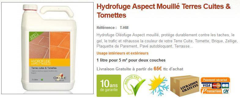 Protection Effet Mouillé Terre Cuite